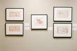 Picturing History: Ledger Drawings of the Plains Indians by Fairfield University Art Museum
