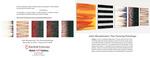 John Mendelsohn:  The Passing Paintings Brochure